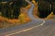 MILES CANYON ROAD IN FALL, WHITEHORSE