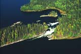 AER SUM SCE  SK     1515153D      AERIAL OF LAKES AND BOREAL FORESTCHURCHILL RIVERLAC LA RONGE PROVINCIAL PARK   09/10© CLARENCE W. NORRIS                  ALL RIGHTS RESERVEDAERIAL;BOREAL;CHURCHILL_RIVER;ISLANDS;LAC_LA_RONGE_PP;LAKES;PP_;RAPIDS;RIVERS;SASKATCHEWAN;SHIELD;SCENES;SK_;SUMMER;WATERLONE PINE PHOTO              (306) 683-0889