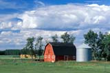 CAL AUT SCE  AB  CWN2207701DRED BARN AND STORM CLOUDSTHORSBY                            09..© CLARENCE W. NORRIS      ALL RIGHTS RESERVEDAB_;ALBERTA;AUTUMN;BARNS;BUILDINGS;CAL_AB;CALENDARS;CLOUDS;FARMING;FARMYARDS;FIELDS;GRANARIES;PLAINS;PRAIRIES;RURAL;SCENES;STORMS;STRUCTURES;THORSBY;TREES;WEATHERLONE PINE PHOTO              (306) 683-0889