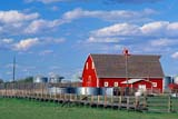 CAL AUT SCE  AB  CWN2207823DRED BARN AND FENCEDAYSLAND                           09..© CLARENCE W. NORRIS      ALL RIGHTS RESERVEDAB_;ALBERTA;AUTUMN;BARNS;BUILDINGS;CAL_AB;CALENDARS;CLOUDS;CORRALS;DAYSLAND;FARMING;FARMYARDS;FENCES;PLAINS;PRAIRIES;RURAL;SCENES;SKY;STRUCTURESLONE PINE PHOTO              (306) 683-0889