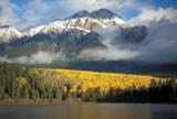 CAL AUT SCE  AB  DSR1000082DPATRICIA LAKE AND PYRAMID MOUNTAIN WITH FALL COLOURSJASPER NATIONAL PK         10..© DUANE S. RADFORD         ALL RIGHTS RESERVEDAB_;ALBERTA;ALPINE;AUTUMN;CAL_AB;CALENDARS;CORDILLERA;ELEMENTS;JASPER_NP;LAKES;MIST;MIXED_FOREST;MOUNTAINS;NP_;PATRICIA_LAKE;PYRAMID_MOUNTAIN;ROCKIES;SCENES;TREES;WATERLONE PINE PHOTO              (306) 683-0889