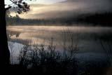 CAL SUM  SCE  BC     WFS1000002DHARMON LAKE AT DAWNHERETT FOREST DISTRICT    05/..           © WILLIAM F. SMITH            ALL RIGHTS RESERVEDALPINE;BC_;BRITISH;BRITISH_COLUMBIA;CAL_BC;CALENDARS;COLUMBIA;CORDILLERA;DAWN;ELEMENTS;FOG;HARMON_LAKE;HERETT_FOREST_DISTRICT;INTERIOR;LAKES;MIST;SCENES;SPRING;TREES;WATERLONE PINE PHOTO                  (306) 683-0889