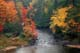 FALL COLOURS, DRYBERRY CREEK, SIOUX NARROWS PROVINCIAL PARK