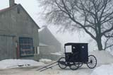 CAL WIN SCE  ON     2170304DMENNONITE BUGGY IN WINTER FOGELMIRA                                  01/14© CLARENCE W. NORRIS         ALL RIGHTS RESERVEDBUGGY;BUILDINGS;CAL_ON;CALENDARS;CENTRAL;CULTURE;ELMIRA;FARMING;FOG;MENNONITE;MENNONITE_COUNTRY;ON_;ONTARIO;RURAL;SCENES;SNOW;STRUCTURES;TRANSPORTATION;TREES;WINTERLONE PINE PHOTO                (306) 683-0889