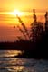 RAVEN AND SHORELINE AT SUNRISE, NELSON RIVER, GILLAM