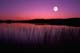 MOONRISE OVER CHILDS LAKE, DUCK MOUNTAIN PROVINCIAL PARK