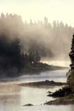CAL AUT SCE  MB  BAE1000054D  VTBACKLIT MORNING MISTGRASS RIVER                        THOMPSON                         10..© BRUCE A. ECKER               ALL RIGHTS RESERVEDAUTUMN;BOREAL;BULLETINS;CAL_MB;CALENDARS;GRASS_RIVER;MANITOBA;MB_;MIST;RIVERS;SCENES;SHIELD;THOMPSON;TREES;VTLLONE PINE PHOTO              (306) 683-0889