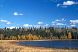 CAL AUT SCE  MB  PNB2002433DFALL CLOUDSGRAYLING LAKERIDING MOUNTAIN NAT PK  ....© PAUL BROWNE              ALL RIGHTS RESERVEDAUTUMN;BOREAL;CAL_MB;CALENDARS;CLOUDS;EVERGREENS;FOREST;GRAYLING_LAKE;LAKES;MANITOBA;MB_;NP_;PLAINS;PLATEAU;PRAIRIES;RIDING_MOUNTAIN_NP;SCENES;SKY;TAMARACKS;TREES;WATERLONE PINE PHOTO            (306) 683-0889