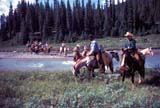 CAL FAR MIS  AB  DSR1000019D  MRTRAIL RIDERS CROSSING PIPESTONE RIVERBANFF NATIONAL PK            08..© DUANE S. RADFORD          ALL RIGHTS RESERVEDAB_;ADVENTURE;ALBERTA;ALPINE;BANFF_NP;CAL_FARMING;CALENDARS;CORDILLERA;COWBOYS;GROUPS;HORSES;MALE;MR_;NP_;OUTDOORS;PIPESTONE_RIVER;RIVERS;SCENES;SUMMER;TRAIL_RIDES;TREES;WATER;WESTERNLONE PINE PHOTO              (306) 683-0889
