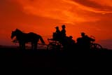 CAL FAR MIS  SK     1610034DPEOPLE SITTING IN HORSE DRAWN CARRIAGE AT SUNSETST. DENIS                                    0729© CLARENCE W. NORRIS              ALL RIGHTS RESERVEDCAL_FARMING;CALENDARS;CARRIAGES;HORSES;PEOPLE;RURAL;SASKATCHEWAN;SCENES;SILHOUETTE;SK_;ST_DENIS;SUMMER;SUNSETS;WESTERNLONE PINE PHOTO                       (306) 683-0889