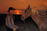 CAL FAR MIS  SK     1610131D  MRCOWBOY AND HORSE AT SUNSETST. DENIS                            0729© CLARENCE W. NORRIS      ALL RIGHTS RESERVEDANIMALS;CAL_FARMING;CALENDARS;COWBOYS;FARMING;HORSES;MALE;MR_;PEOPLE;PLAINS;PRAIRIES;RANCHING;RURAL;SASKATCHEWAN;SCENES;SK_;ST_DENIS;SUMMER;SUNSETS;WESTERNLONE PINE PHOTO              (306) 683-0889