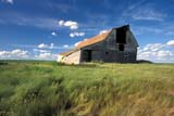 CAL FAR MIS SK     1703317DBARN IN SUMMER GRASSKERROBERT                        0713© CLARENCE W. NORRIS      ALL RIGHTS RESERVEDBARNS;BUILDINGS;CAL_FARMING;CALENDARS;FARMING;GRASS;KERROBERT;PLAINS;PRAIRIES;RURAL;SASKATCHEWAN;SCENES;SK_;STRUCTURES;SUMMERLONE PINE PHOTO              (306) 683-0889