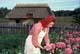 UKRAINIAN WOMAN PICKS FLOWER, UKRAINIAN CULTURAL VILLAGE, EDMONTON