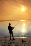 CAL FIS MIS  SK     1502533D  VTFISHERMAN ON SHORE, SUNSET SKYSILHOUETTE AGAINST SETTING SUNPRINCE ABLERT NAT PK        072© CLARENCE W. NORRIS      ALL RIGHTS RESERVEDBOREAL;CAL_FISHING;CALENDARS;FILTER;FISHING;MALE;NP_;PRINCE_ALBERT_NP;OUTDOORS;PEOPLE;PRINCE_ALBERT_NP;SASKATCHEWAN;SK_;SPORTS;SUMMER;VTL;WASKESIU_LAKELONE PINE PHOTO              (306) 683-0889