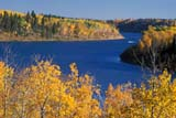 CAL PEO AUT  SK   WS20657D      BOATING ON SASKATCHEWAN RIVER IN AUTUMNNIPAWIN                       09..© WAYNE SHIELS          ALL RIGHTS RESERVEDAUTUMN;BOATS;CAL_PEOPLE;CALENDARS;NIPAWIN;OUTDOORS;PARKLAND;PLAINS;PRAIRIES;RECREATION;RIVERS;SASKATCHEWAN;SASKATCHEWAN_RIVER;SCENES;SHORELINE;SK_;TREES;WATERLONE PINE PHOTO          (306) 683-0889