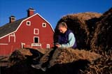 CAL PEO SPR  SK     1902001D  MR GIRL READING ON ROUND BALES RED BARN BEHINDVANSCOY                           04/11© CLARENCE W. NORRIS      ALL RIGHTS RESERVEDBALES;BARNS;BUILDINGS;CAL_PEOPLE;CALENDARS;FARMING;FEMALE;JENNIE;MR_;OUTDOORS;PEOPLE;PLAINS;PRAIRIES;READING;RURAL;SASKATCHEWAN;SCENES;SK_;SPRING;STRUCTURES;TEENS;VANSCOY;YOUTHLONE PINE PHOTO              (306) 683-0889