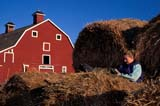 CAL PEO SPR  SK     1902002D  MR GIRL READING ON ROUND BALES RED BAR BEHINDVANSCOY                           04/11© CLARENCE W. NORRIS      ALL RIGHTS RESERVEDBALES;BARNS;BUILDINGS;CAL_PEOPLE;CALENDARS;FARMING;FEMALE;JENNIE;MR_;OUTDOORS;PEOPLE;PLAINS;PRAIRIES;READING;RURAL;SASKATCHEWAN;SCENES;SK_;SPRING;STRUCTURES;TEENS;VANSCOY;YOUTHLONE PINE PHOTO              (306) 683-0889