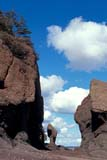 CAL AUT SCE  NB  IAW1606003D  VTROCK FORMATIONSHOPEWELL CAPETHE ROCKS PROV PK          10..© IAN A. WARD                    ALL RIGHTS RESERVEDATLANTIC;AUTUMN;BAY_OF_FUNDY;BRUNSWICK;CAL_NB;CALENDARS;CLOUDS;COASTS;EAST_COAST;EROSION;HEADLAND;MARITIMES;NB_;NEW;NEW_BRUNSWICK;OCEAN;PP_;SCENES;SKY;SUNSETS;THE_ROCKS_PP;WATERLONE PINE PHOTO              (306) 683-0889
