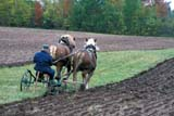 CAL AUT SCE  NS  CRS0000047D  MRMAN PLOWING WITH HORSESPICTOU COUNTY              10/..   © CLIFF SANDESON         ALL RIGHTS RESERVEDANIMALS;ATLANTIC;AUTUMN;CAL_NS;CALENDARS;EAST_COAST;FARMING;HISTORIC;HORSES;LIVESTOCK;MALE;MARITIMES;MR_;NOVA;NOVA_SCOTIA;NS_;PEOPLE;PICTOU_COUNTY;PIONEERS;PLOWING;RURAL;SCENES;SCOTIA;TREESLONE PINE PHOTO          (306) 683-0889