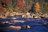 CAL AUT SCE  NS  CRS0000062DRAPIDS IN AUTUMNLISCOMB                        10/..   © CLIFF SANDESON         ALL RIGHTS RESERVEDATLANTIC;AUTUMN;CAL_NS;CALENDARS;EAST_COAST;LISCOMB;MARITIMES;NOVA;NOVA_SCOTIA;NS_;RAPIDS;RIVERS;SCENES;TREES;WATERLONE PINE PHOTO          (306) 683-0889