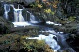 CAL AUT SCE  NS  CRS0000175D WATERFALLSWEST BRANCH BEAR RIVER   10/..© CLIFF SANDESON               ALL RIGHTS RESERVEDATLANTIC;AUTUMN;BEAR_RIVER;BLUR;CAL_NS;CALENDARS;EAST_COAST;MARITIMES;MOTION;NOVA;NOVA_SCOTIA;NS_;RIVERS;SCENES;TREES;WATER;WATERFALLS;WEST_BRANCH_BEAR_RIVERLONE PINE PHOTO                (306) 683-0889