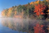 CAL AUT SCE  NS  CRS0000201D  FALL COLOURSBAILLIE LAKE                       10/..© CLIFF SANDESON             ALL RIGHTS RESERVEDATLANTIC;AUTUMN;BAILLIE_LAKE;CAL_NS;CALENDARS;EAST_COAST;ELEMENTS;LAKES;MARITIMES;MIST;NOVA;NOVA_SCOTIA;NS_;SCENES;SCOTIA;TREES;WATERLONE PINE PHOTO              (306) 683-0889