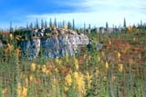 CAL AUT SCE  NT  KJM0114908DFALL COLOURED TREES ON ROCKY HILLSIDEDEMPSTER HIGHWAY           09..© KEVIN MORRIS                 ALL RIGHTS RESERVEDARCTIC;AUTUMN;CAL_NT;CALENDARS;CLIFF;DEMPSTER_HIGHWAY;HILLSIDE;FOREST;NORTHWEST;NORTHWEST_TERRITORIES;NT_;NWT;ROUTES;SCENES;SHIELD;TERRITORIES;TREESLONE PINE PHOTO              (306) 683-0889