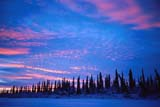 CAL AUT SCE  NT  KJM0118008DFROZEN RIVER AND TREES AT SUNSETINUVIK                                 12..© KEVIN MORRIS                 ALL RIGHTS RESERVEDARCTIC;AUTUMN;CAL_NT;CALENDARS;CLOUDS;FOREST;INUVIK;NORTHWEST;NORTHWEST_TERRITORIES;NT_;NWT;RIVERS;SCENES;SHIELD;SHORELINE;SKY;SUNSET;TERRITORIES;TREESLONE PINE PHOTO              (306) 683-0889