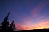 CAL SUM SCE  NT  IAW1703705DSUNSET FROM LOOKOUT POINTTHELON RIVER                    07..© IAN A. WARD                   ALL RIGHTS RESERVEDARCTIC;CAL_NT;CALENDARS;NORTHWEST;NORTHWEST_TERRITORIES;NT_;NWT;SCENES;SKY;SUMMER;SUNSETS;TERRITORIES;THELON_RIVER;TREESLONE PINE PHOTO             (306) 683-0889