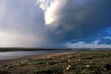 CAL SUM SCE  NT  IAW1704008DTHUNDERSTORM OVER RIVERTHELON RIVER                    07..© IAN A. WARD                   ALL RIGHTS RESERVEDARCTIC;CAL_NT;CALENDARS;CLOUDS;ELEMENTS;NORTHWEST;NORTHWEST_TERRITORIES;NT_;NWT;RIVERS;SCENES;STORMS;SUMMER;TERRITORIES;THELON_RIVER;THUNDERSTORMS;WATER;WEATHERLONE PINE PHOTO              (306) 683-0889