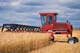 MF SWATHER AND MAKWA WHEAT, ROSTHERN