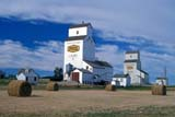 CAL AUT SCE  SK    0810126ADSASK WHEAT POOL ELEVATORS AND ROUND BALES IN FALLLAURA                                   07/..   © CLARENCE W. NORRIS         ALL RIGHTS RESERVEDALYS;AUTUMN;BALES;CAL_SK;CALENDARS;ELEVATORS;HAY;LAURA;PLAINS;POOL;PRAIRIES;ROUND;RURAL;SASK_WHEAT_POOL;SASKATCHEWAN;SCENES;SK_;STRUCTURESLONE PINE PHOTO                 (306) 683-0889