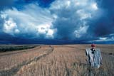 CAL AUT SCE  SK     0910245DSCARECROW AND STORM CLOUDSART SCARBON FARMLIMERICK                             09/10© CLARENCE W. NORRIS      ALL RIGHTS RESERVEDAUTUMN;CAL_SK;CALENDARS;CLOUDS;FARMING;FIELDS;LIMERICK;PLAINS;PRAIRIES;RURAL;SASKATCHEWAN;SCARECROWS;SCENES;SK_;SKY;WEATHER  LONE PINE PHOTO              (306) 683-0889