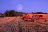 CAL AUT SCE  SK     1202617DMOONRISE OVER SWATHER PARKED IN STUBBLE FIELDLAC LA PECHE                       09/21© CLARENCE W. NORRIS       ALL RIGHTS RESERVEDAUTUMN;CAL_SK;CALENDARS;CROPS;DOUBLE_EXPOSURE;EQUIPMENT;FARMING;FIELDS;LAC_LA_PECHE;MOON;PHOTOGRAPHY;PLAINS;PRAIRIES;SASKATCHEWAN;SK_;STUBBLE;SWATHINGLONE PINE PHOTO                (306) 683-0889