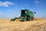 CAL AUT SCE  SK     1306206DJD COMBINE HARVESTING MAKWA WHEATSASKATOON                       09/21© CLARENCE W. NORRIS      ALL RIGHTS RESERVEDAUTUMN;CAL_SK;CALENDARS;COMBINING;CROPS;EQUIPMENT;FARMING;FIELDS;HARVEST;JOHN_DEERE;MAKWA;OCCUPATIONS;PEOPLE;PLAINS;PRAIRIES;SASKATCHEWAN;SASKATOON;SCENES;SK_;WHEAT LONE PINE PHOTO              (306) 683-0889