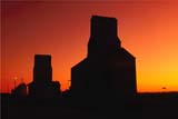 CAL AUT SCE  SK     1307529DPIONEER GRAIN ELEVATORS IN SUNSET GLOWOSLER                                   10/09             © CLARENCE W. NORRIS         ALL RIGHTS RESERVEDAUTUMN;CAL_SK;CALENDARS;ELEVATORS;FARMING;OSLER;PIONEER;PLAINS;PRAIRIES;SASKATCHEWAN;SCENES;SILHOUETTE;SK_;STRUCUTURES LONE PINE PHOTO                 (306) 683-0889