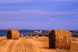 CAL AUT SCE  PE  CRS0000168D   HAY BALESFRENCH RIVER                     09/..© CLIFF SANDESON             ALL RIGHTS RESERVEDATLANTIC;AUTUMN;BALES;CAL_PE;CALENDARS;CROPS;EAST_COAST;EDWARD;FARMING;FRENCH_RIVER;HAY;ISLAND;MARITIMES;PE_;PEI;PRINCE;PRINCE_EDWARD_ISLAND;RIVERS;SCENES;WATERLONE PINE PHOTO              (306) 683-0889