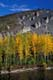 FALL COLOURED TREES AND HILL ON OGILVIE RIVER, DEMPSTER HIGHWAY