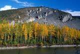 CAL AUT SCE  YT  KJM0219916DFALL COLOURED TREES AND ROCKY HILLDEMPSTER HIGHWAY            08..© KEVIN MORRIS                  ALL RIGHTS RESERVEDALPINE;AUTUMN;CAL_YT;CALENDARS;CORDILLERA;DEMPSTER_HIGHWAY;FOREST;MOUNTAINS;OGILVIE_RIVER;SCENES;TREES;YT_;YUKONLONE PINE PHOTO               (306) 683-0889