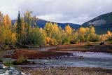 CAL AUT SCE  YT  KJM0220803DOGILVIE RIVER IN FALLDEMPSTER HIGHWAY           09..© KEVIN MORRIS                 ALL RIGHTS RESERVEDAUTUMN;CAL_YT;CALENDARS;CORDILLERA;DEMPSTER_HIGHWAY;MOUNTAINS;OGILVIE_RIVER;RIVERS;ROUTES;SCENES;WATER;YT_;YUKONLONE PINE PHOTO              (306) 683-0889