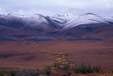 CAL AUT SCE  YT  KJM0221011DSNOW DUSTED MOUNTAINS IN FALLRICHARDSON MOUNTAINSDEMPSTER HIGHWAY           09..© KEVIN MORRIS                 ALL RIGHTS RESERVEDAUTUMN;CAL_YT;CALENDARS;CORDILLERA;DEMPSTER_HIGHWAY;MOUNTAINS;RICHARDSON_MOUNTAINS;ROUTES;SCENES;SNOW;YT_;YUKONLONE PINE PHOTO              (306) 683-0889