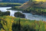 CAL AUT SCE YT  PEH1000171DFALL COLOUR, FIVE FINGER RAPIDSYUKON RIVER                        09..             © PHIL HOFFMAN                  ALL RIGHTS RESERVEDALPINE;AUTUMN;CAL_YT;CALENDARS;COLOUR;CORDILLERA;FIVE_FINGER_RAPIDS;ISLANDS;RIVERS;SCENES;VALLEYS;WATER;YT_;YUKON;YUKON_RIVER  LONE PINE PHOTO                (306) 683-0889