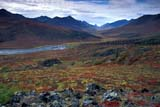 CAL AUT SCE  YT  PEH1000186DNORTH KLONDIKE RIVERTOMBSTONE MOUNTAINYUKON                               09..© PHIL HOFFMAN                ALL RIGHTS RESERVEDALPINE;AUTUMN;CAL_YT;CALENDARS;CORDILLERA;MOUNTAINS;NORTH_KLONDIKE_RIVER;RIVERS;SCENES;TOMBSTONE_MOUNTAIN;VALLEYS;YT_;YUKONLONE PINE PHOTO              (306) 683-0889