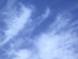 ELE CLO MIS  SK  CWN02D1644D   CLOUDS IN SKYSASKATOON                            08/..© CLARENCE W. NORRIS           ALL RIGHTS RESERVEDCLOUDS;ELEMENTS;PLAINS;PRAIRIES;SASKATCHEWAN;SASKATOON;SK_;SKY;SUMMER;WEATHERLONE PINE PHOTO                  (306) 683-0889