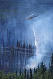 ELE FIR FOR  YT  PEH1000250D    VT  HELICOPTER DROPPING  WATER ON FOREST FIREWHITEHORSE                         08/..   © PHIL HOFFMAN                  ALL RIGHTS RESERVEDAERIAL;AIR;BOREAL;CORDILLERA;ELEMENTS;FIRE;FIREFIGHTERS;FOREST_FIRES;HELICOPTERS;SMOKE;VTL;WATER;WEATHER;YT_;YUKONLONE PINE PHOTO                  (306) 683-0889
