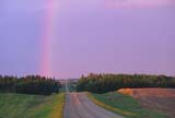 ELE RAI BOW  SK     1301914D     RAINBOW OVER COUNTRY ROADCHRISTOPHER LAKE                     06/11 © CLARENCE W. NORRIS              ALL RIGHTS RESERVEDCHRISTOPHER_LAKE;ELEMENTS;FARMING;FIELDS;PARKLAND;PLAINS;PRAIRIES;RAIN;RAINBOWS;ROADS;SASKATCHEWAN;SCENES;SK_;SKY;SUMMER;WEATHERLONE PINE PHOTO                  (306) 683-0889