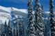 SNOW-COVERED PINES AND RIDGE, KOOTENAY NATIONAL PARK