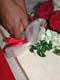 BRIDE AND GROOM CUTTING WEDDING CAKE, SALMON ARM