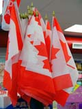 EVE CAN DAY  SK   CWN02T0241D  VT CANADIAN FLAGS ON DISPLAYSASKATOON                            06..© CLARENCE W. NORRIS           ALL RIGHTS RESERVEDBULLETINS;CANADIAN;CELEBRATIONS;EVENTS;FLAGS;HOLIDAYS;PLAINS;PRAIRIES;SASKATCHEWAN;SASKATOON;SK_;VTLLONE PINE PHOTO                  (306) 683-0889