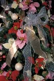 EVE CHR MIS  SK     1813641D  VT   POINSETTIAS AND BOWSFESTIVAL OF TREESSASKATOON                       12/..© CLARENCE W. NORRIS      ALL RIGHTS RESERVEDBOWS;BULLETINS;CHRISTMAS;CRAFTS;DECORATIONS;DISPLAYS;EVENTS;FLOWERS;PLAINS;POINTSETTIAS;PRAIRIES;RIBBONS;SASKATCHEWAN;SASKATOON;SK_;VTLLONE PINE PHOTO              (306) 683-0889